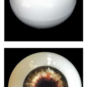 Silicone Human Eye Replica (Brown Iris)-0